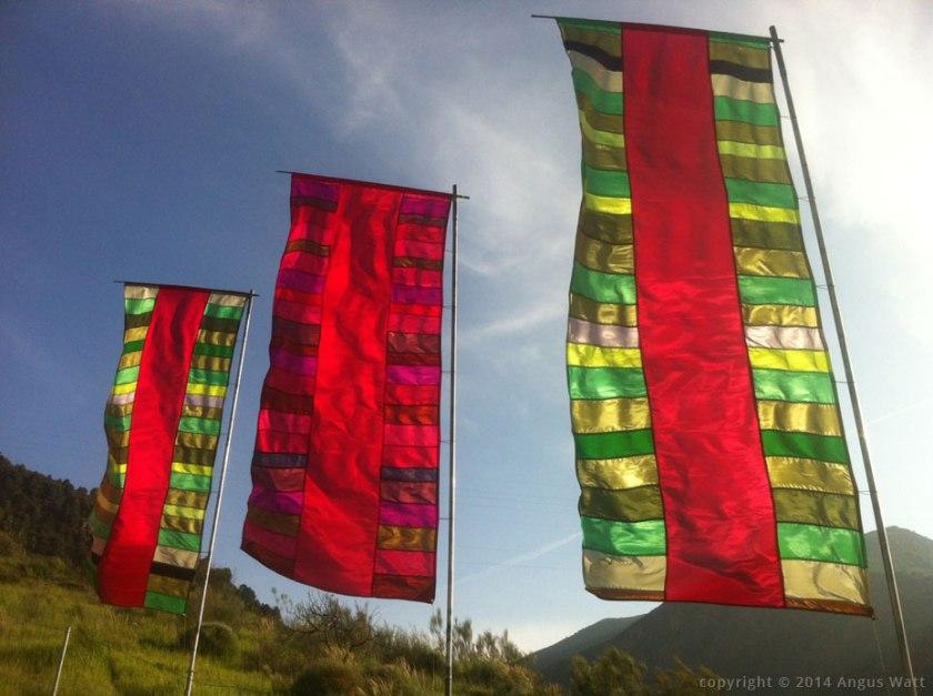 Examples of Watt's flags, from his website, anguswatt.net