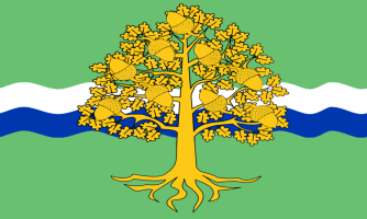 Flag of the Nottinghamshire County Council, England. Source: British County Flags and Wikimedia Commons.