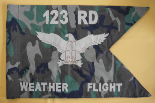 "A camouflage flag... what's the point?  At least the word has ""flag"" in it! The guidon of the 123rd Weather Flight, Oregon Air National Guard."