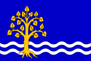 Municipal flag of Pastvini, Czech Republic. Source: Wikimedia Commons and FOTW.