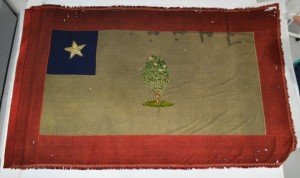 Flag of the Confederate state of Mississippi, captured by the 2nd Iowa Cavalry on 30 May 1862, now at the State Historical Society of Iowa. The tree is a Southern Magnolia (Magnolia grandiflora). Source: Historical Flags article