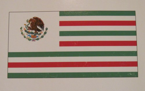 Jorge-Rojas-and-Diego-Aguirre-Mexican-American-flag