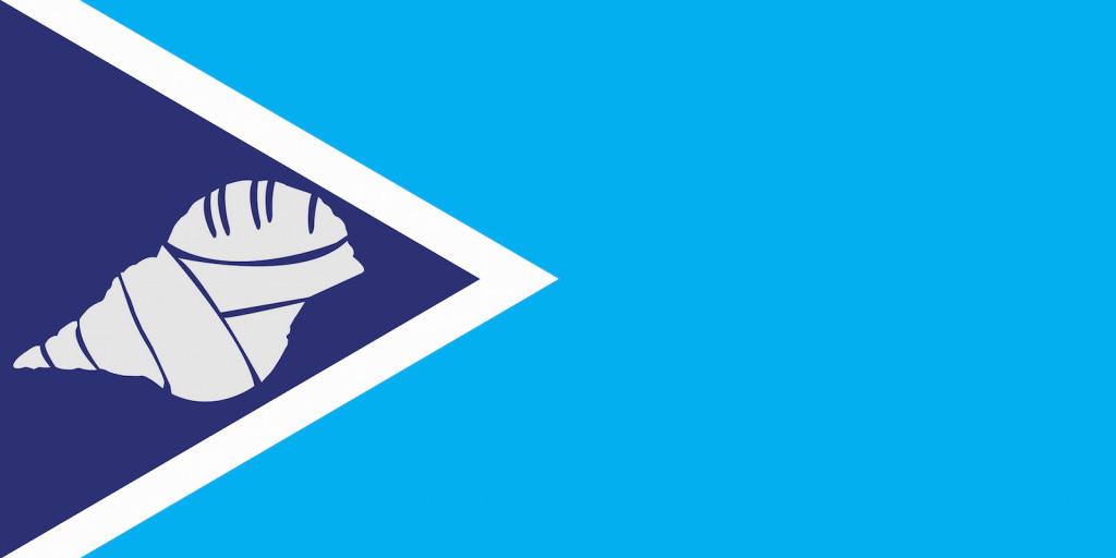 23 1st Round Finalists for New Fiji Flag  Portland Flag