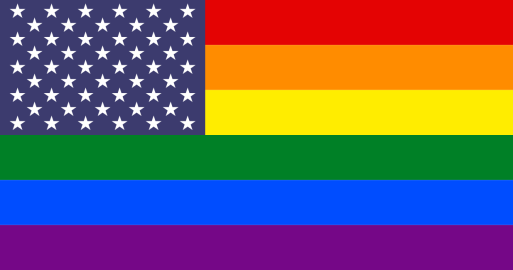 Image result for america queer flag