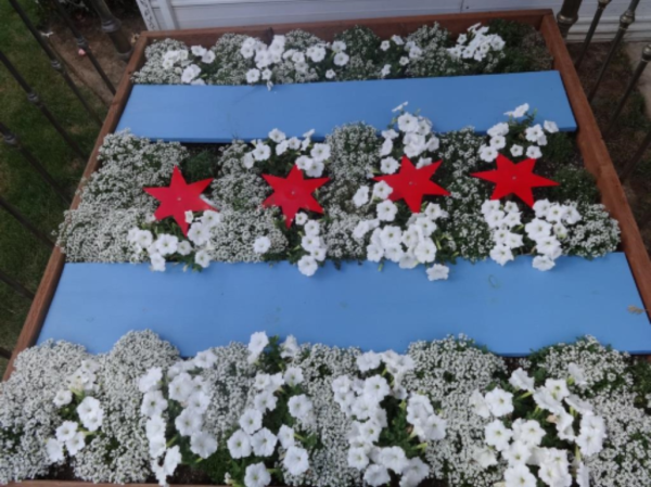 """Michael Orelove's """"flower bed"""" features the flag of Chicago, Illinois."""