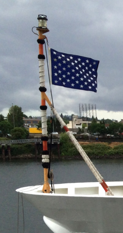 The Union Jack of the United States flies from the bow of USCGC Waesche (WMSL-751), a National Security   Cutter.  She flies the traditional U.S. jack—only US Navy ships are flying the so-called First Navy Jack with the  rattlesnake.