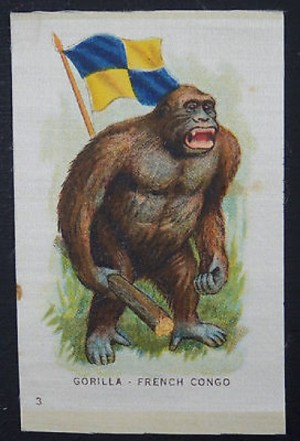 An enraged gorilla dislikes an alleged flag of the French Congo planted in his back.