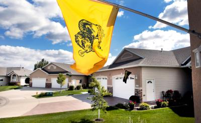Homes along Wheatland Pines Drive, in south Fargo, fly North Dakota State University Bison flags. Photo by Dave Wallis, The Forum.