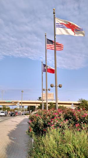 "Photo posted to Your Dallas Flag, 9 October 2015. ""Success is ultimately releasing the flag to be embraced by the citizens as their own."""