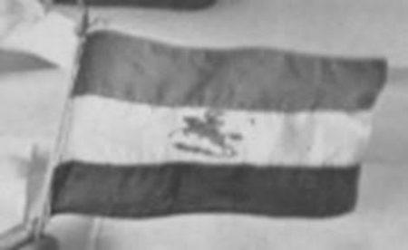 mystery-flag