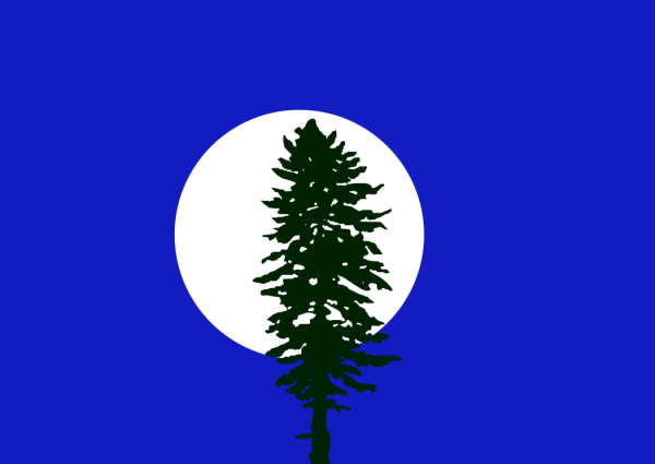"A flag sent to us by ""Random Pendragon"" along with this note: ""A flag I made, inspired by a night in the woods. After hours of wandering the chilled forest, I stumbled out of the thicket and into an open field. Looming before me was a single doug fir, with the moon glaring behind it in all its glory. I call it ""Cascadia by Night."" I have been designing flags almost nonstop in the past few months. The Portland Flag Association has really inspired me. """