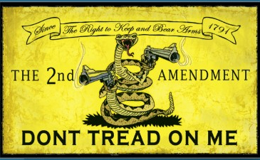 gadsden flag � portland flag association
