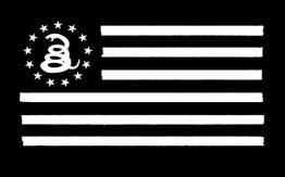 Monochrome US flag