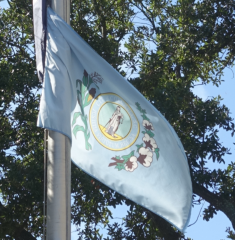 A light-blue version of the Columbia city flag flies below the state and national flags outside City Hall.